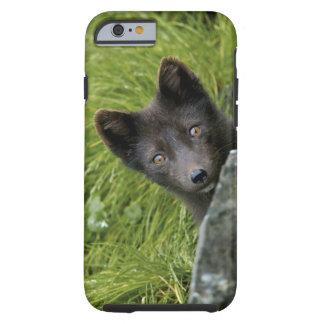 De V.S., Alaska, Pribilof Eilanden, St Paul. Blauw Tough iPhone 6 Hoesje