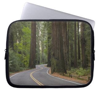 De V.S., Californië, weg door het bos van de Laptop Sleeve