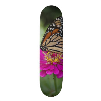 De V.S., Massachusetts, Boylston, de Heuvel van de 20,0 Cm Skateboard Deck