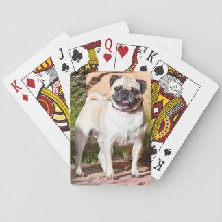 De V.S., New Mexico. Pug die zich in Hoge Grassen Speelkaarten