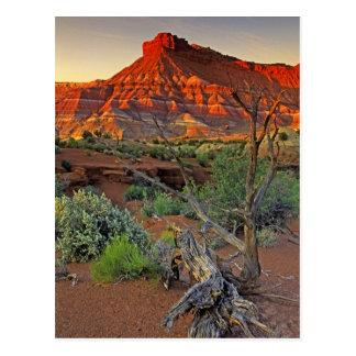 De V.S., Utah. Het zandsteenvorming van de Canion Briefkaart