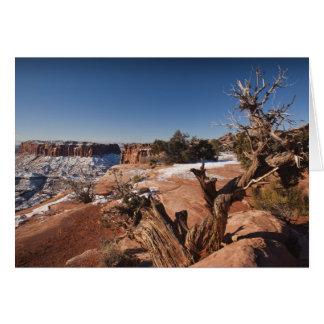 De V.S., Utah, Moab. Het Nationale Park van Briefkaarten 0