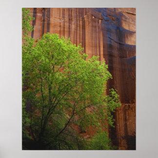 De V.S., Utah, Vermillion van de Canion Paria Klip Poster