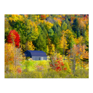 De V.S., Vermont. Foilage van de herfst langs Weg Briefkaart