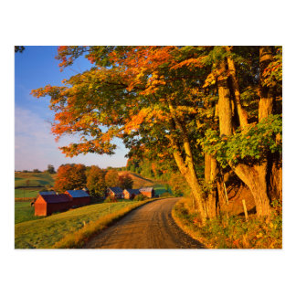 De V.S., Vermont, Zuiden Woodstock Briefkaart