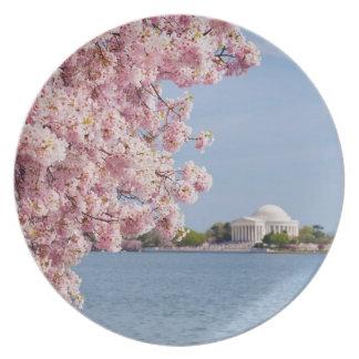 De V.S., Washington DC, de boom van de Kers Melamine+bord
