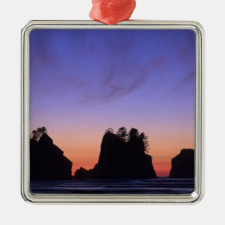 De V.S., Washington, Olympisch Nationaal Park, Zilverkleurig Vierkant Ornament