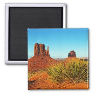 De Vallei van het monument, Arizona Magneet