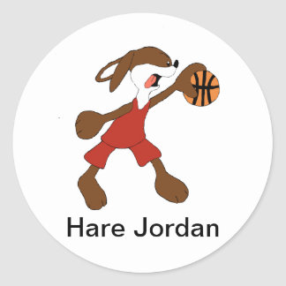 De Ventilator van Michael Jordan van het Konijn Ronde Sticker