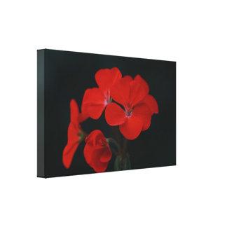 De verbazende Rode Bloemen Uitgerekte Druk van het Canvas Afdrukken