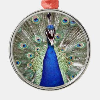 De Veren van de pauw Zilverkleurig Rond Ornament
