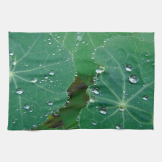 De verfrissende Dalingen van de Regen Handdoek