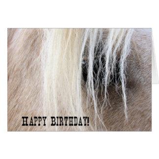 De Verjaardag van het Oog van het Paard van Kaart