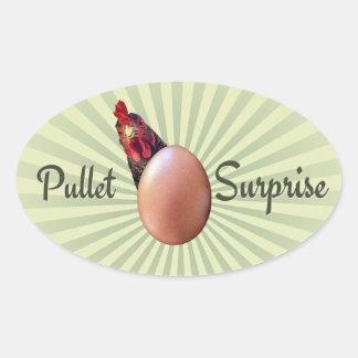 De Verrassing van de jonge kip Ovale Sticker