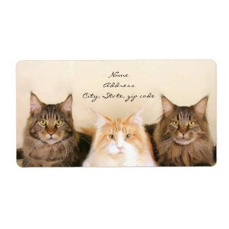 De Verschepende Etiketten van de Katten van de