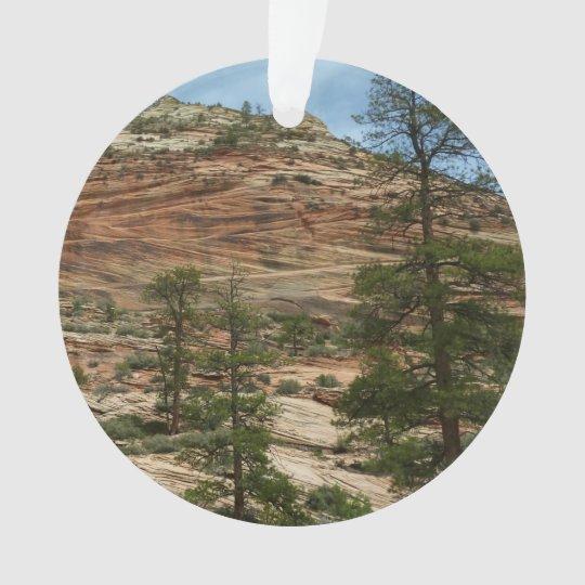 De versleten Muren van de Rots in Nationaal Park Ornament
