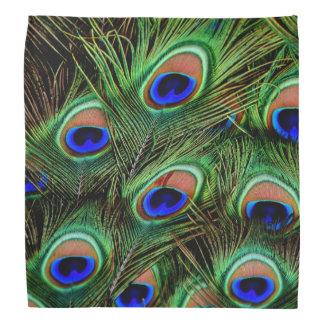 De Vertoning van de Veer van de pauw Bandana