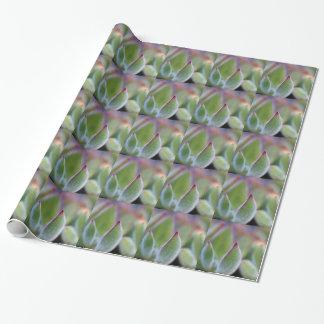 De verwarde Groene Succulente Macro van Bladeren Inpakpapier