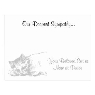 De Veterinaire Sympathie van de kat Briefkaart