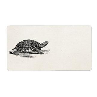 De vintage Amerikaanse Schildpad van de Doos - de Etiket