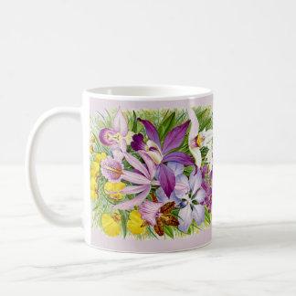 De vintage/Antiek Koffie van Orchideeën of de Mok