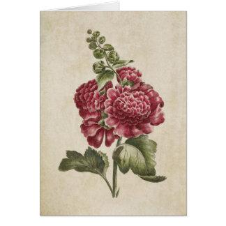 De vintage Botanische BloemenIllustratie van de Wenskaart