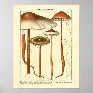De vintage Bruine Druk van de Kunst van Poster