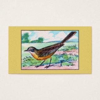 De vintage Druk van de Vogel van de Kwikstaart Visitekaartjes