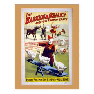 De vintage Ganzen van het Circus, Hanen en een Briefkaart