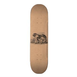 De vintage Illustratie van de Honden van de Hond 18,4 Cm Mini Skateboard Deck