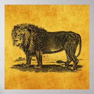 De vintage Illustratie van de Leeuw - Afrikaans Poster