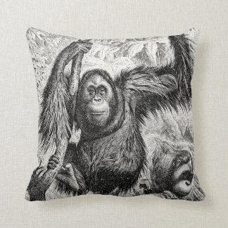 De vintage Illustratie van de Orangoetan - Aap Sierkussen