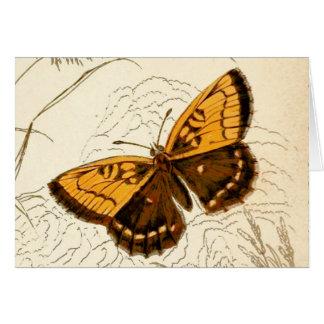 De vintage Illustratie van de Vlinder, Goud en Briefkaarten 0