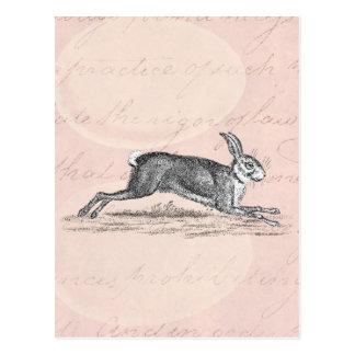 De vintage Illustratie van het Konijn van het Briefkaart