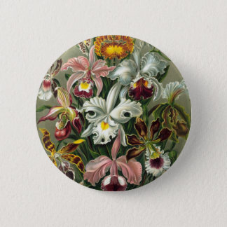 De vintage Illustratie van Orchideeën Ronde Button 5,7 Cm