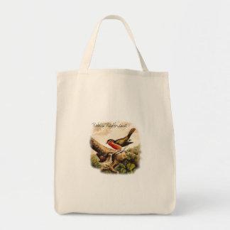 De vintage Illustratie van Robins van Vogels met Draagtas