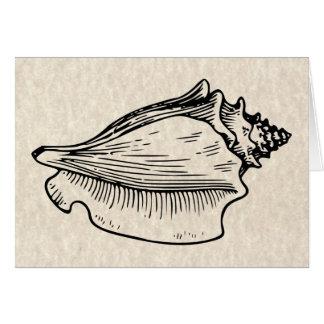 De Vintage Illustratie van Shell van de kroonslak Kaart