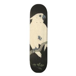 De vintage Japanse Fijne Kaketoe van de Kunst Skate Decks