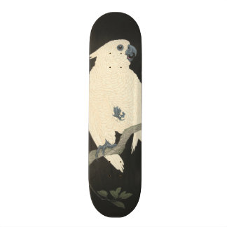 De vintage Japanse Fijne Kaketoe van de Kunst Skateboard