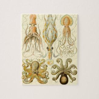 De vintage Pijlinktvis Gamochonia van de Octopus Puzzel