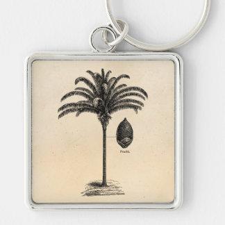 De vintage Retro Braziliaanse Palmen van de Sleutelhanger