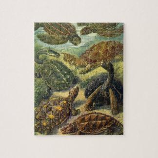 De vintage Schildpad van het Land van de Legpuzzel