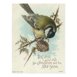 De vintage Tak van de Vogel en van de Pijnboom Briefkaart