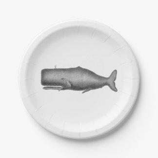 De vintage Tekening van de Walvis van de 19de Eeuw Papieren Bordje