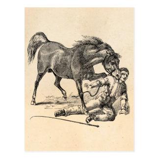 De vintage Wrede het Bijten Sjabloon van het Paard Briefkaart