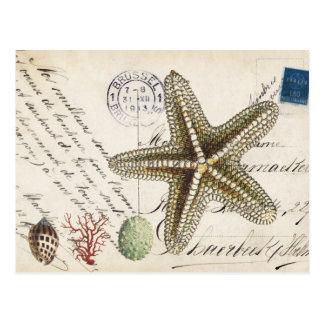 De vintage zeester van de Kroonslak en Briefkaart