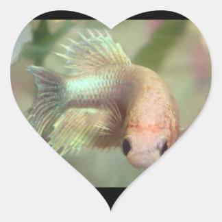 De vis Stickers van het Meisje!