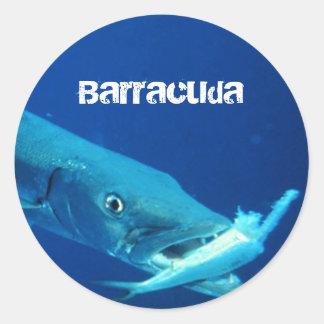 De Vissen van de barracuda Ronde Sticker