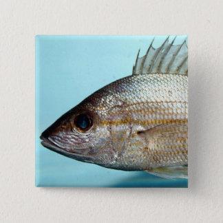 De Vissen van het gegrom Vierkante Button 5,1 Cm