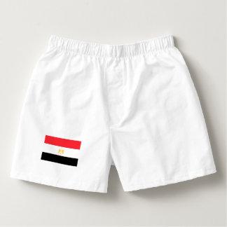 De Vlag van Egypte